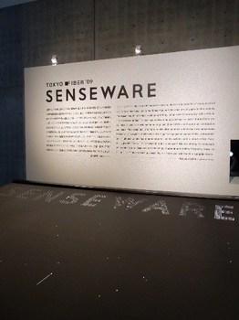 SENSEWARE3.jpg
